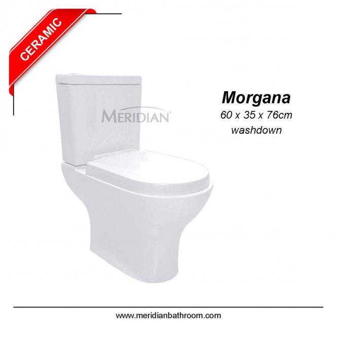 morgana356
